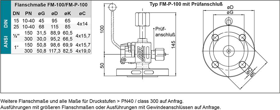 Techn-Daten-DE-FM100-Manometer